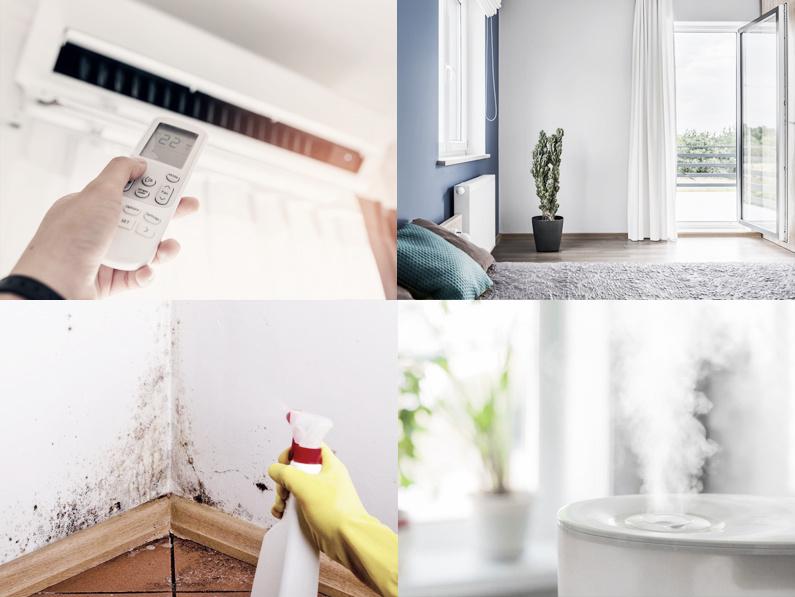 Causas y soluciones ante humedades en casa cantitec - Soluciones para mosquitas de la humedad ...