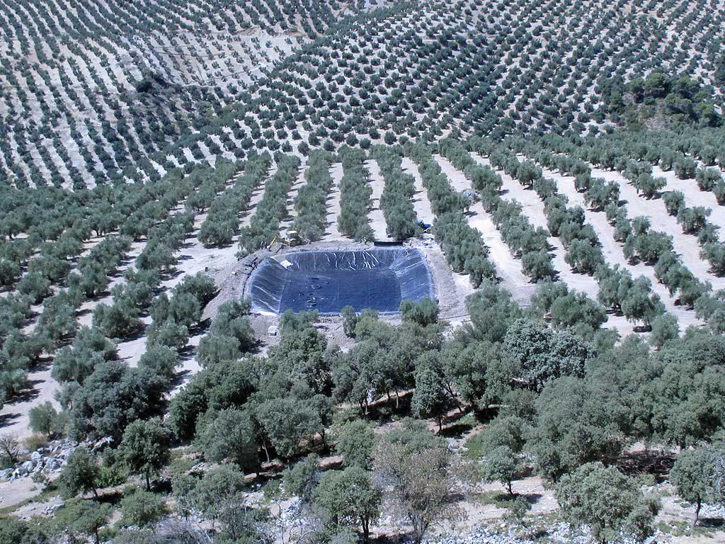 Trabajo de adaptación de terreno para balsa de riego y su posterior impermeabilización mediante lámina separadora de geotextil y polietileno de alta densidad, a cargo de la empresa Cantitec