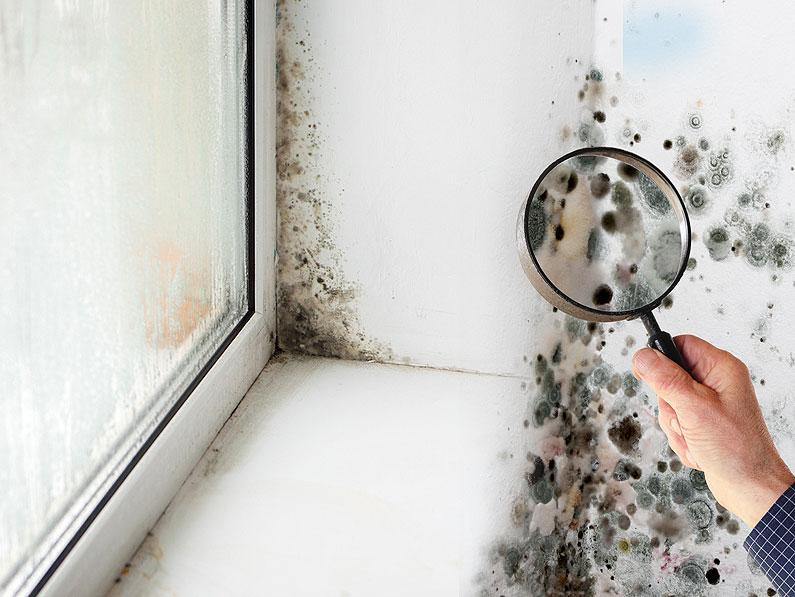 C mo afecta la humedad en casa a la salud y c mo evitarla - Humedad en la pared ...