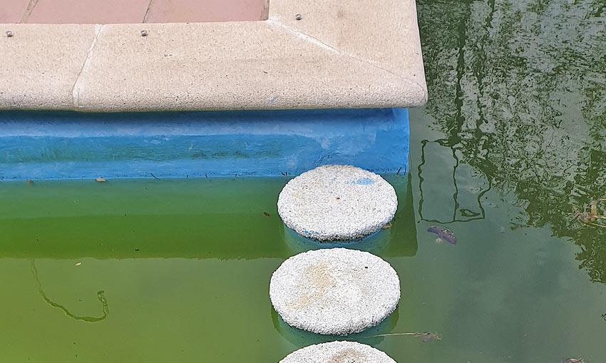 error diseño piscina cantitec granada